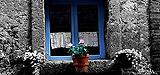 La Toscana, Italia. Fotos de Patricia Osuna