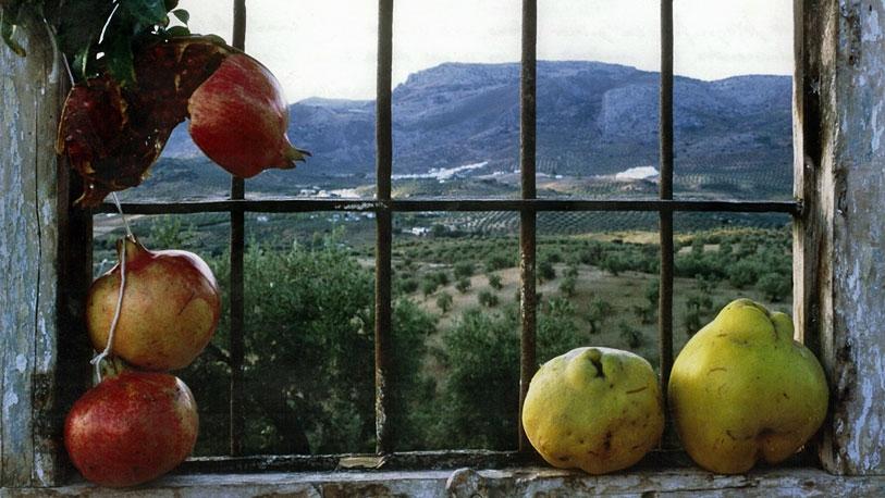 Los parajes de la campi�a cordobesa se cuelan por la ventana.