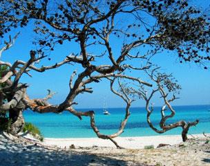 El lado salvaje de la isla aflora en cualquier rinc�n, ya sea mar o monta�