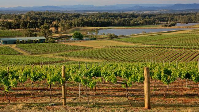 El id�lico valle de Hunter, un destino para amamtes del vino y los productos 'gourmet'.