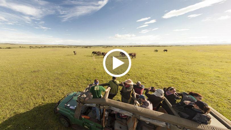 Pinche sobre la imagen para desplegar la panorámica completa y acceder a otras imágenes en 360 grados de un safari africano.