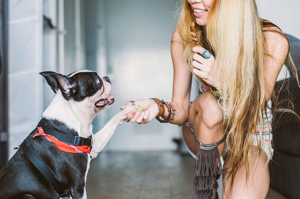 Webs como DogBuddy.com conectan a dueños de mascotas con una red de canguros caninos repartidos por toda Europa.