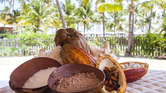 Hay dos variedades de cacao, la verde y la roja.