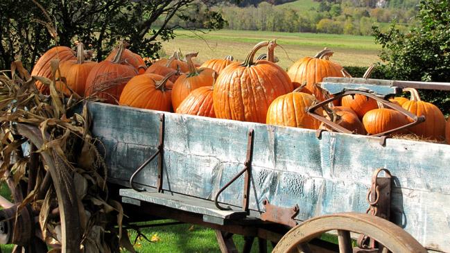 Cada vez m�s lugares se suman a la celebraci�n de la noche de Halloween. Foto: Shutterstock.
